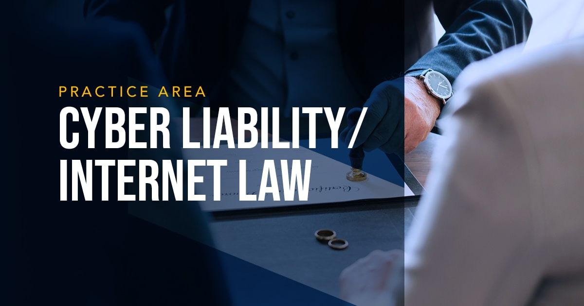 LYDECKER - CYBER LIABILITY ⁄ INTERNET LAW