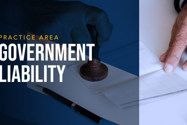 LYDECKER - GOVERNMENT LIABILITY